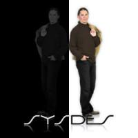 SYSDES Foto Logo