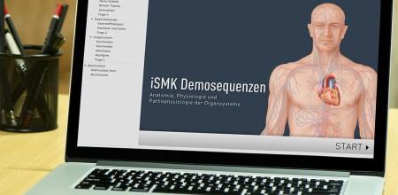 iSMK Demokurs