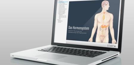 "iSMK Lernmodul ""Hormonsystem"""