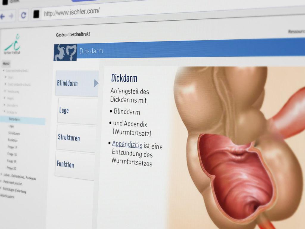 ismk-gastrointestinaltrakt-04