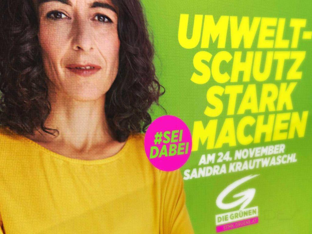 Webseite für die Grünen Steiermark
