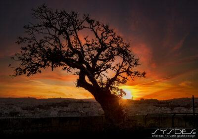 Sonnenuntergang Malta