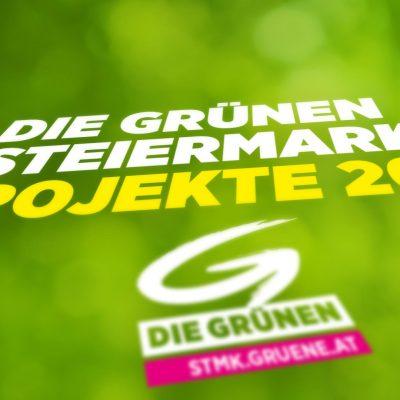 Die-Gruenen-Projekte-2017